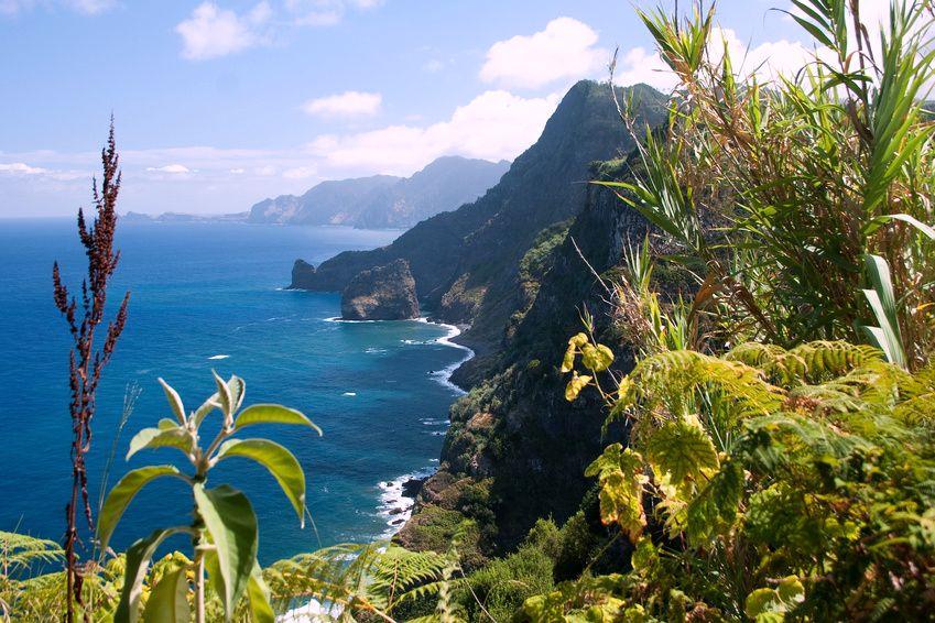 Gruppenreise nach Madeira in den ewigen Frühling mit Pleitsch und Gut