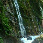 Reiseplanung Naturreisen, von Plietsch & Gut